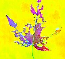 Somebody had Leaf for Lunch – Yellow by Mike Solomonson