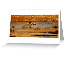 """It's a bird! It's a plane! It's a duck!"" Greeting Card"