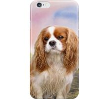 Cavalier Spaniel In the sunset iPhone Case/Skin