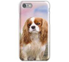 Cavalier Spaniel In the sunset iPhone Case/Skin