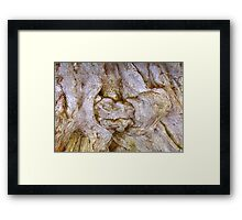 Tree Dweller Framed Print
