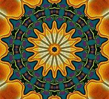 Solar by owlspook