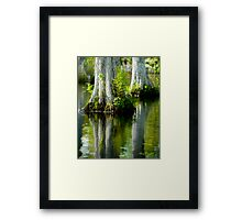 Cypress Swamp Reflections © Framed Print