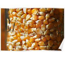 Corn in jar Poster