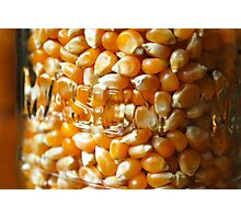 Corn in jar Photographic Print