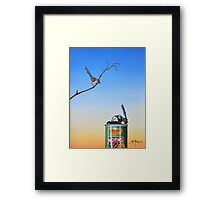 The Early Bird Catches The Worm Framed Print