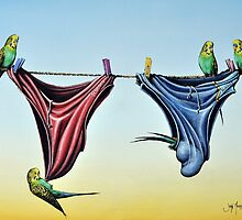 Double Budgie Smugglers by John  Murray