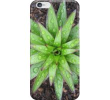 Perfect Symmetry in Green iPhone Case/Skin
