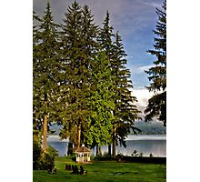 On the Lawn - Olympic National Park Photographic Print