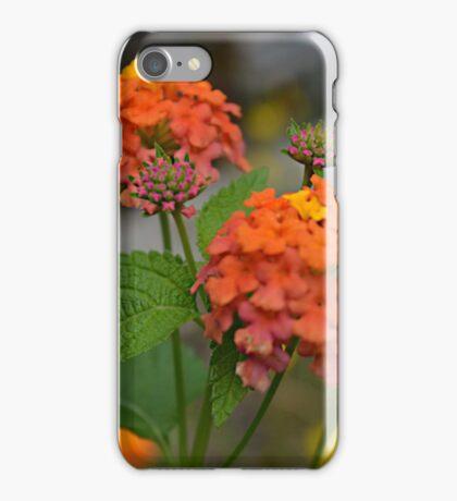 Orange, Yellow, and Pink Lantana iPhone Case/Skin