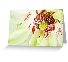 SUMMER CLEMATIS ~ WIDE PALETTE KNIFE ~ OIL ON CANVAS Greeting Card