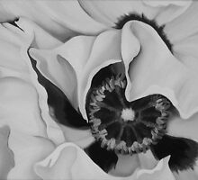 GHOST POPPY MONOCHROME ~ OIL ON CANVAS B/W by LacewingDesign