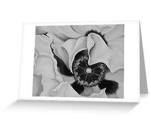 GHOST POPPY MONOCHROME ~ OIL ON CANVAS B/W Greeting Card