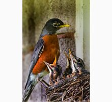 American Robin And Nest Unisex T-Shirt
