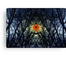 SymmetryInExtremis&Rebirthing Canvas Print