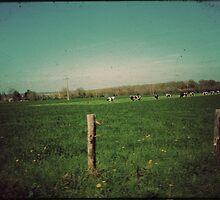 La symphonie pastorale...  by Louise LeGresley