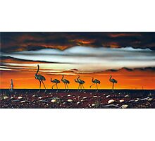 A Longneck and Six Stubbies (Red) Photographic Print