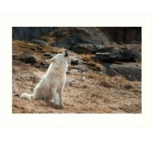 Howling Arctic Wolf Art Print