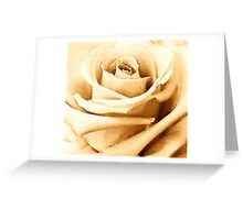 SEPIA COLLECTION ~ SEPIA ROSE ~ WIDE BRUSH OILS Greeting Card