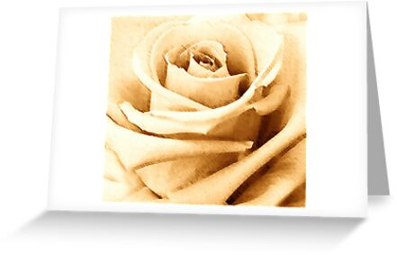 SEPIA COLLECTION ~ SEPIA ROSE ~ WIDE BRUSH OILS by LacewingDesign