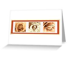 SEPIA COLLECTION ~ SEPIA ROSE TRIPTYCH ~ MIXED MEDIA Greeting Card