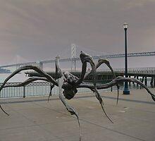 Crouching Spider by Nico3