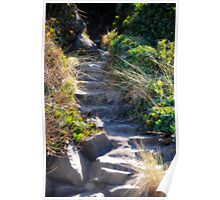 Magical Stairway Poster