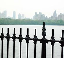 CP Reservoir Fence with NYC Skyline by MissCellaneous