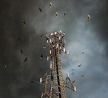Vulture Swarm by patjarrett