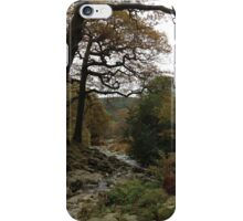 Ireland - Powerscourt River iPhone Case/Skin