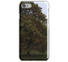 Ireland - Blarney Panaramic iPhone Case/Skin