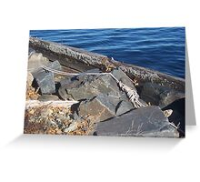 Rope Over the Rocks Greeting Card