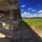 Under the Boardwalk by Brian Puhl IPA