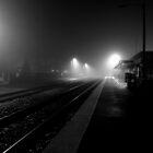 rolling fog by George Salazar
