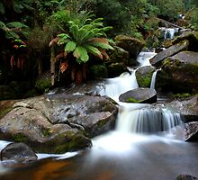 Keppel Falls by Lindsay Knowles