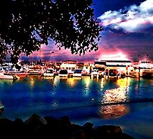 Sunset At Nelson Bay d'Albora Marinas by Ian Mooney