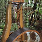 old mine equipment in the bush at Rosebery by gaylene