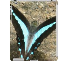 Blue Triangle Butterfly - A Closer View iPad Case/Skin