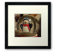 Snow globe Framed Print