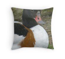A Common Shelduck Throw Pillow
