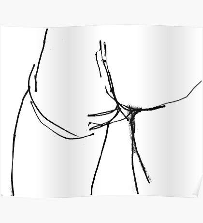 Pen Sketch of a Butt Poster