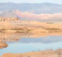 Reflection in Nevada by Kristi Lockwood
