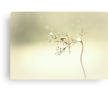 Snow Flower Canvas Print