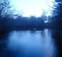 Blue Lagoon by fishandpigs