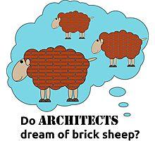 Do architects dream of brick sheep? Photographic Print