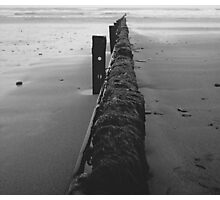 Barriers of the sea Photographic Print