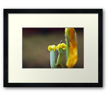 Naked... Framed Print