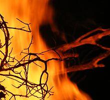Inferno by Elizabeth Stevens