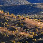 McDonald Ranges- Central Australia #4 by iansimages