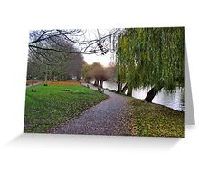 Willows and benches Greeting Card